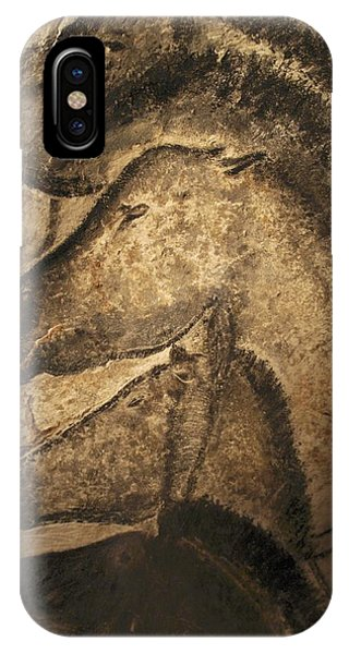 Fauna iPhone Case - Stone-age Cave Paintings, Chauvet, France by Javier Truebamsf