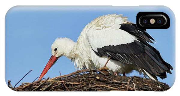 IPhone Case featuring the photograph Stork On A Nest by Nick Biemans