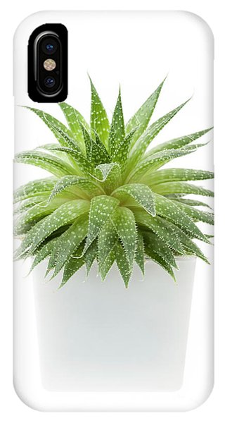 IPhone Case featuring the photograph Succulent Plant by Elena Elisseeva