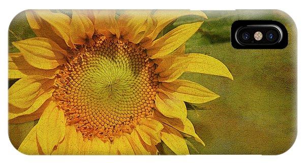 Sunflower iPhone X / XS Case - Sunflower by Cindi Ressler