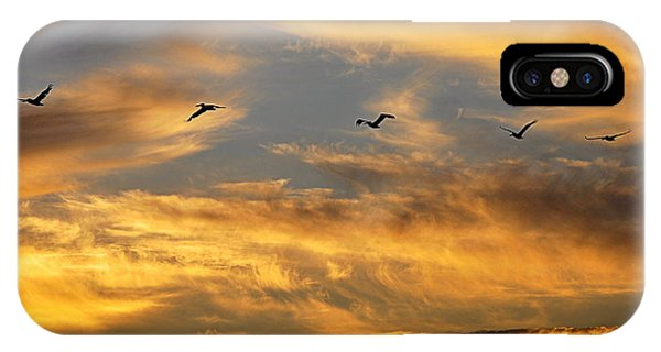 Sunset Flight IPhone Case