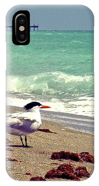 iPhone Case - Terns On The Beach by Chris Andruskiewicz