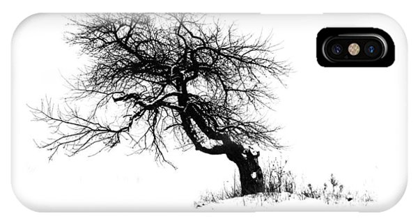 The Apple Tree IPhone Case
