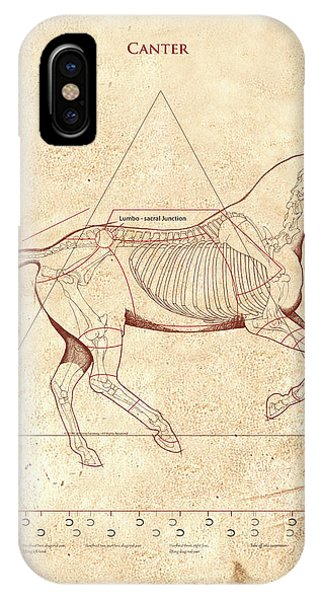 The Horse's Canter Revealed IPhone Case