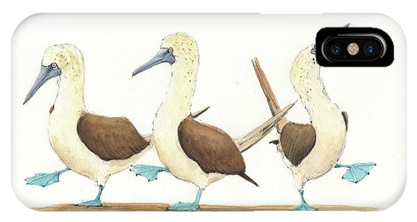 Bird Watercolor iPhone Case - Three Blue Footed Boobies by Juan Bosco