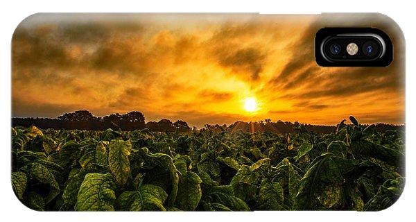 Tobacco Sunrise  IPhone Case