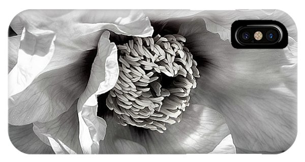 IPhone Case featuring the photograph Tree Peony 'mystery' by Ann Jacobson