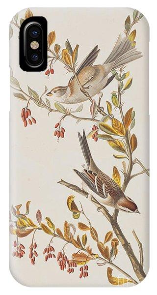 Tree Sparrow IPhone Case