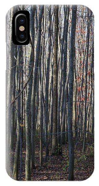 Treez IPhone Case