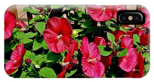 Tropical Red Hibiscus Bush IPhone Case