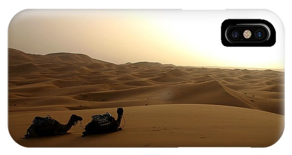 Two Camels At Sunset In The Desert IPhone Case