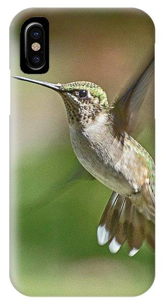Untitled Hum_bird_five IPhone Case