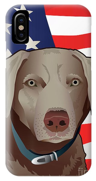 Usa Silver Lab IPhone Case