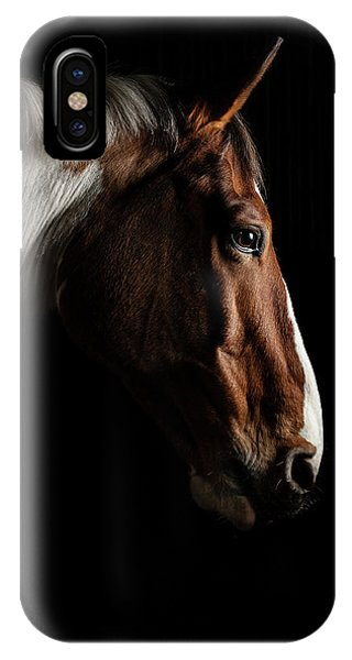 Equine iPhone Case - Warmblood by Samuel Whitton