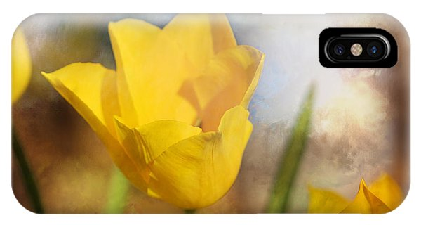 Water Lily Tulip Flower IPhone Case