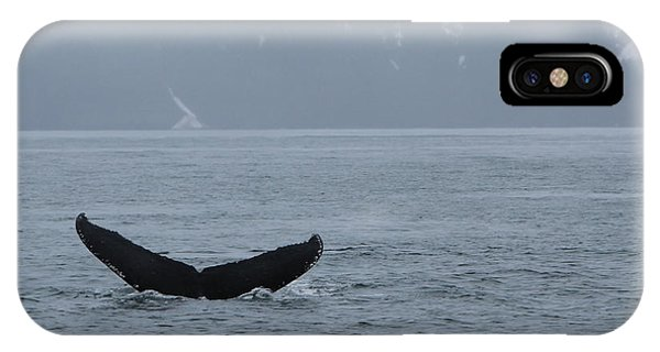 IPhone Case featuring the photograph Whale Fluke by Brandy Little