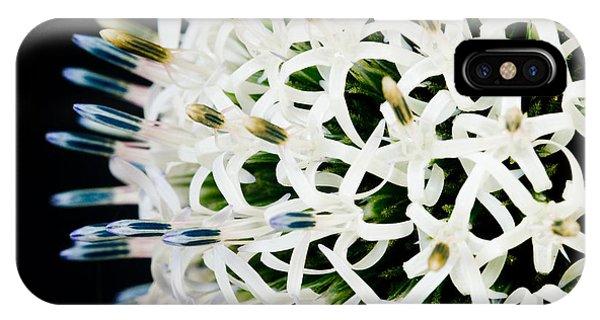 White Alium Onion Flower IPhone Case