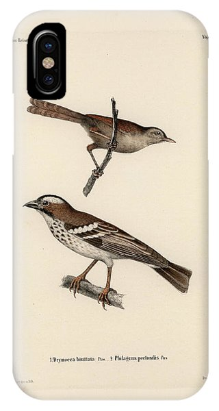 IPhone Case featuring the drawing White-browed Sparrow-weaver And Grass Or Bush Warbler by J D L Franz Wagner