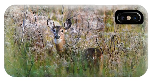 Wakulla iPhone Case - Whitetail Deer In Winter Dreamscape by Carla Parris