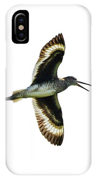 Willet IPhone Case
