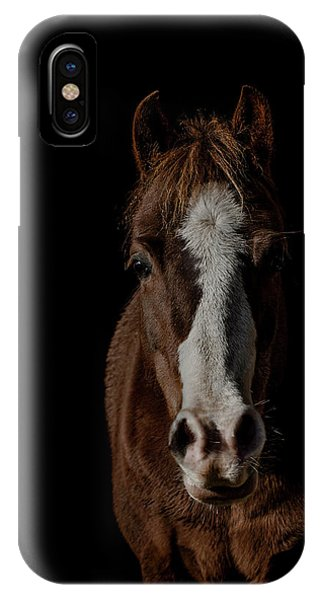 Equine iPhone Case - Window To The Soul by Paul Neville