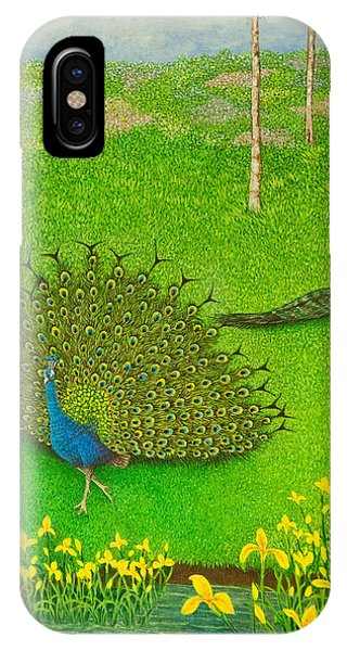 Plumes iPhone Case - Winning Ways by Pat Scott