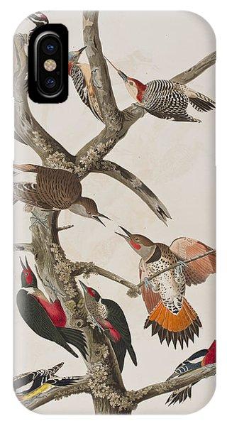 Audubon iPhone X Case - Woodpeckers by John James Audubon