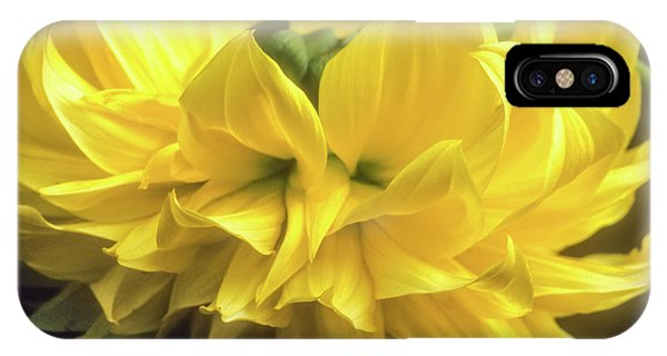 IPhone Case featuring the photograph Yellow Dahlia by John Brink