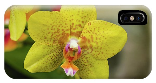 IPhone Case featuring the photograph Yellow Orchid by Cristina Stefan