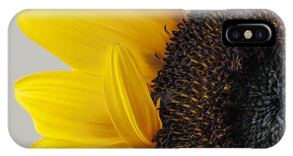 Yellow Sunflower Photograph IPhone Case