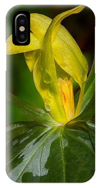 Yellow Trillium IPhone Case
