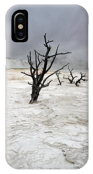 Yellowstone Mammoth Hot Springs IPhone Case