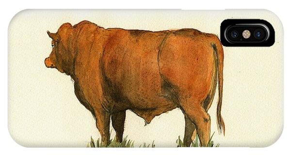 Bull Art iPhone Case - Zebu Cattle Art Painting by Juan  Bosco