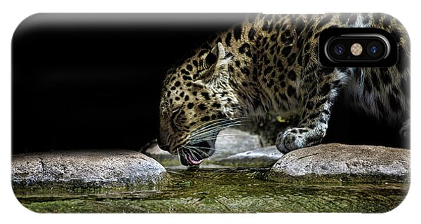 Adapted iPhone Case - Amur Leopard by Martin Newman