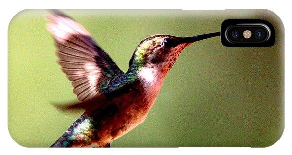103456 - Ruby-throated Hummingbird IPhone Case