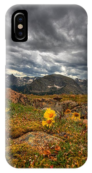 Rocky Mountain Np iPhone Case - 12000 Foot Flower by Peter Tellone