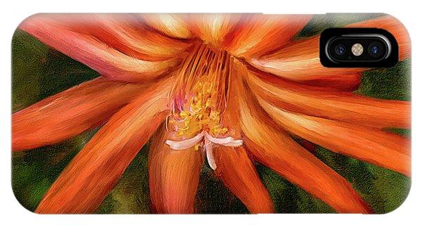 Nora Cactus Blossom IPhone Case