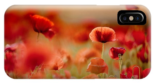 Bloom iPhone Case - Poppy Dream by Nailia Schwarz