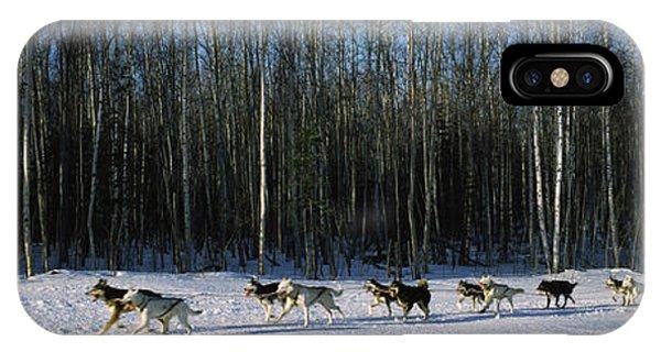 18 Huskies Begin The Long Haul Of 1049 IPhone Case