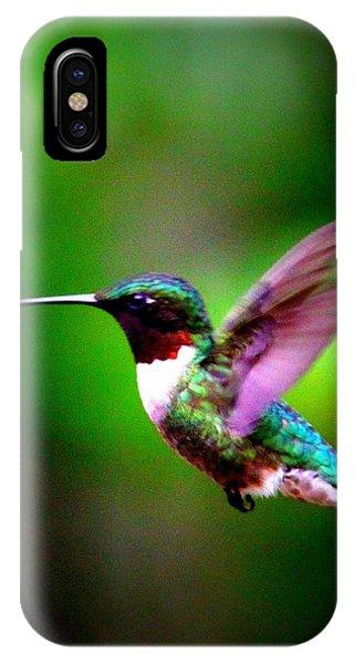 1846-007 - Ruby-throated Hummingbird IPhone Case