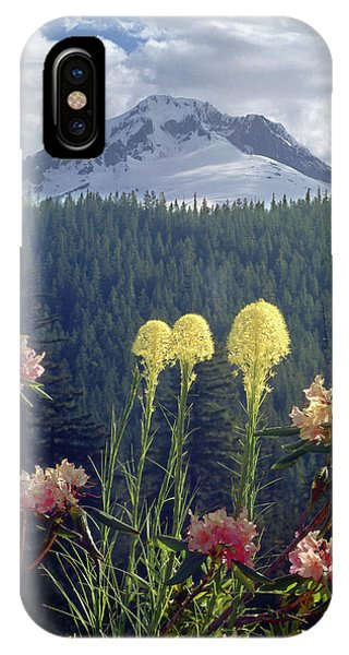 1m5101 Flowers And Mt. Hood IPhone Case