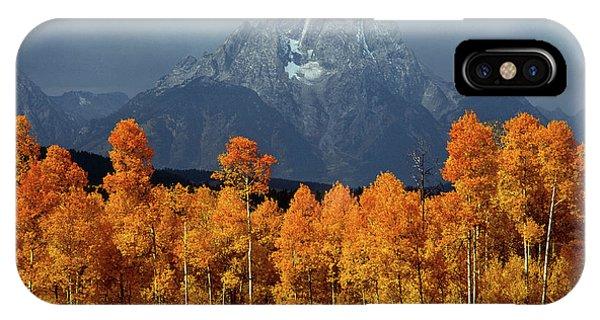 1m9235 Mt. Moran In Autumn IPhone Case