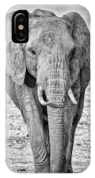 African Elephants In The Masai Mara IPhone Case