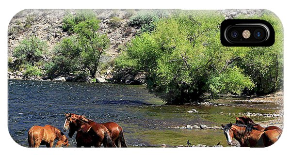 Arizona Wild Horses IPhone Case