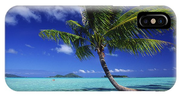Bora Bora, Palm Tree IPhone Case