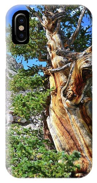 Bristlecone Loop Trail IPhone Case
