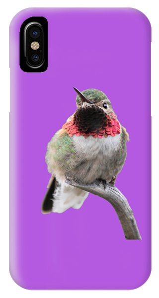 Broad-tailed Hummingbird IPhone Case