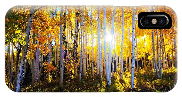 IPhone Case featuring the photograph Colorado Autumn by Kate Avery