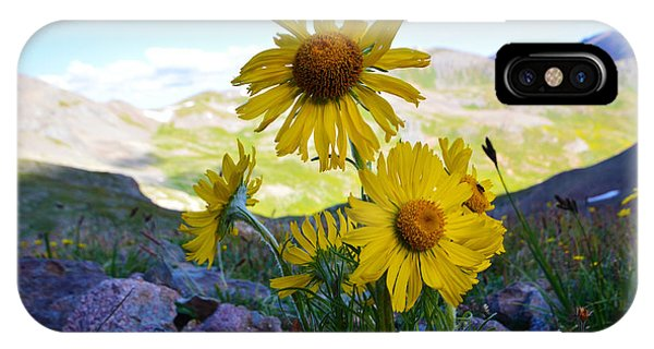 IPhone Case featuring the photograph Colorado Wildflowers by Kate Avery