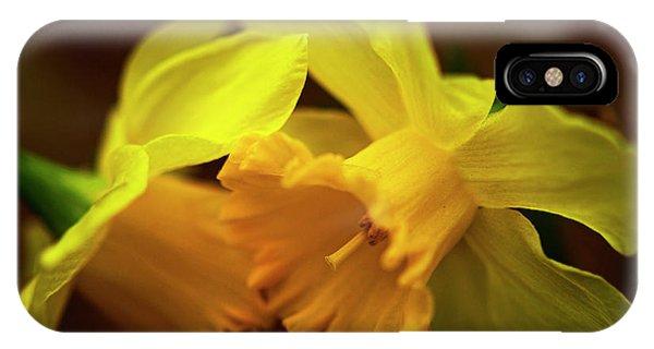 2 Daffodils IPhone Case